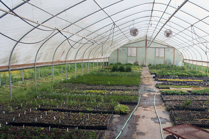 Landscape nursery greenhouse Woodland, WA